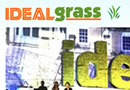 Ideal Grass responsive web design